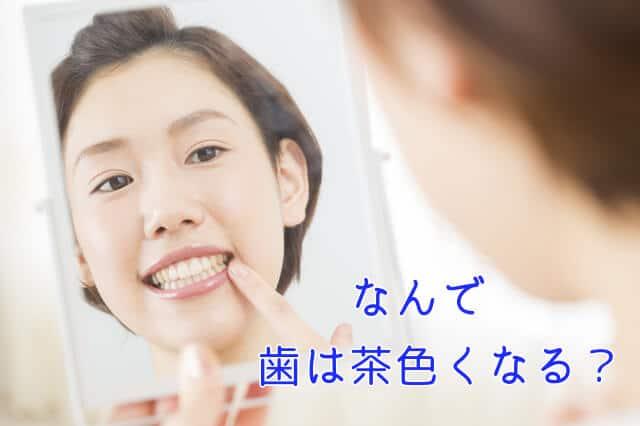 なんで歯は茶色くなる?
