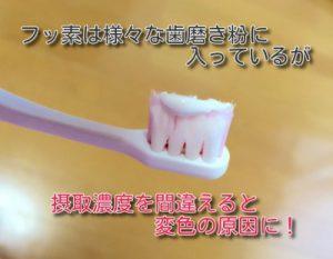 フッ素入り歯磨き